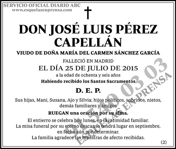 José Luis Pérez Capellán